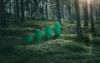 Greenstep Brand Imagery 001 Web